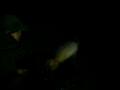 rybki 8