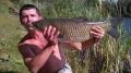 Amur  74 cm 7 kg